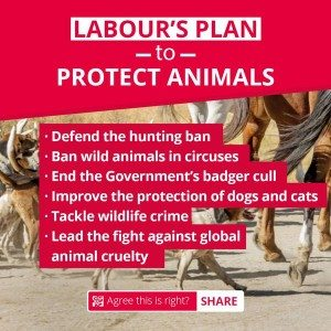 Labour kept its pre-election promises on cuddly animals, and unfortunately kept to it's pre-election policies on disability as well